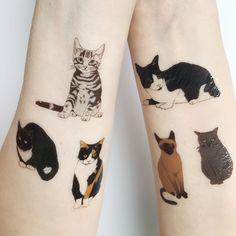 Cute Tattoos, Body Art Tattoos, Small Tattoos, Cute Cat Tattoo, Ankle Tattoos, Tatoos, Tatoo Art, Tattoo You, Hp Tattoo