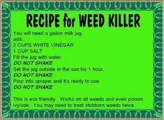 Garten Weed killer recipe Toronto Heating And Air Conditioning Ask anyone from any pa Garden Weeds, Lawn And Garden, Organic Gardening, Gardening Tips, Flower Gardening, Weed Killer Homemade, Organic Weed Control, Lawn Care, Good To Know