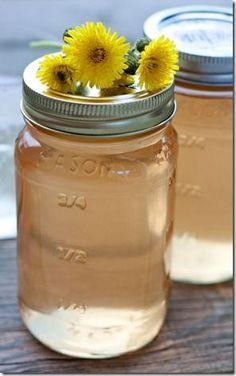 Backyard Foraging: Dandelion Cordial