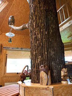 Sanbu Farm tree-house interior