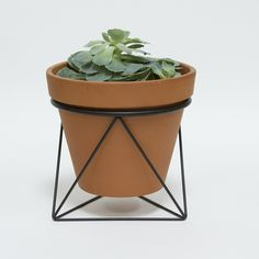 octa ring planter_black. $55 Eric trine