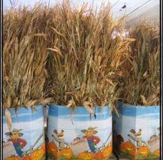 corn stalks bunched together Corn Stalks, Planter Pots, Party Ideas, Decorating, Fall, Decor, Autumn, Decoration, Fete Ideas