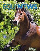 Kentucky Equine Research -ker.com.