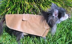 Small Canine's Tan Corduroy Coat with by BloomingtailsDogDuds, $23.95