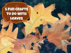 5 Fun Crafts to Do with Leaves