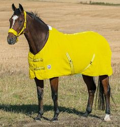 Horze Brighton Cotton Waffle Cooler/Sheet - 50% off, only $29.99   ChickSaddlery.com. I NEED THIS.