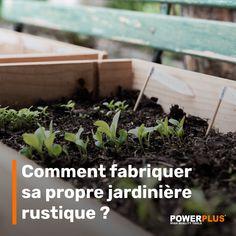 Plantation, Raised Garden Beds, House Plants, Harvest, Diy Home Decor, Gardening, Planting, Green, Nature