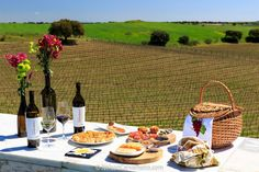 Discover the best wine travel tips and advice in Portugal. Articles about wine tasting tours in Portugal and the best wine hotels and restaurants Portugal Travel, Portugal Tourism, Wine Tourism, Cruise Europe, Spring Vacation, Gifts For Wine Lovers, Wine Tasting, Wine Recipes, Wines