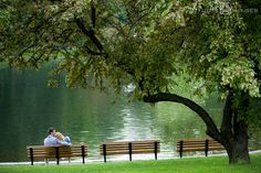 Boston Public Garden, Clerys, Couples, Engagement, engagement photography, engagement photos, Love, MA, Massachusetts, Boston wedding photog...