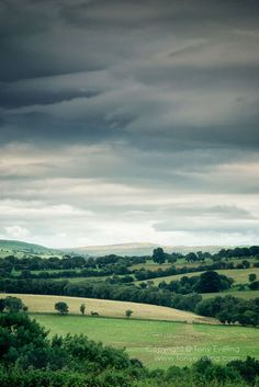 Cheshire countryside near the Welsh border, cheshire, England, UK