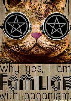 Familior Cat