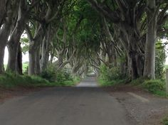 One of my favorite stops in the Game of Thrones tour in Northern Ireland.