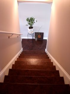 Brown paper stairs..... I am sooo ripping up my carpet on the stairs and in the upstairs hallway to do this!!