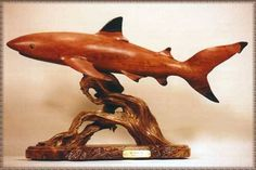 'Black Tip' by Craig Nichols  don't buy this!  it will eat the turts while you're asleep!
