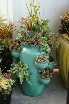 Love the variety in this pot!