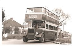 295 on service Surfleet photo. Worthing, Bus Coach, London Transport, Busses, Rockers, Coaches, Brighton, Robin, Transportation