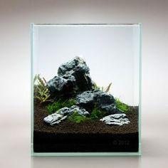 http://www.zooplus.de/shop/aquaristik/aquarium_dekoration/nano_nature_sets/291867