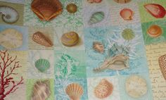Seashell heavy duty paper sheets flat wrap collage, scrapbooking or gift wrapping