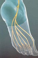 Peripheral Neuropathy Symptoms, Causes, Traditional & Alternative Treatments. GREAT INFORMATION! by peripheralneuropathytreatments.com