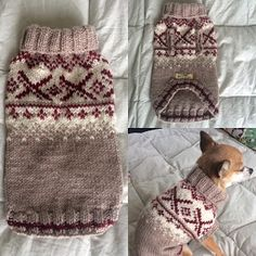 Chrochet, Knit Crochet, Chihuahua Rescue, Cowichan Sweater, Contact Email, Dog Sweaters, Knitted Blankets, Crochet Clothes, Hand Knitting