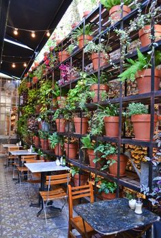 "Le Pain Quotidien | Buenos Aires..great way to ""enliven"" a brick wall"