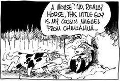 Footrot Flats Horse is one mean cat. #footrotflats #cartoons #horsethecat