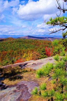 Cedar Rock hike in DuPont State Forest in the North Carolina mountains