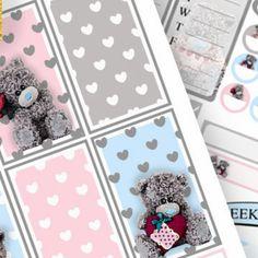 Teddy 🐻 bears Mambi Happy Planner
