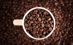 Coffee beans #coffee #beans #brewing