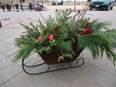 Outdoor Christmas planter - sleigh~ Found one at a yard sale this summer for $5!
