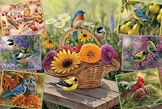 Rosemary's Birds, A 2000 Piece Jigsaw Puzzle By Cobble Hill. by Cobble Hill: Amazon.de: Spielzeug