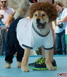 chow chow as napoleon dynamite