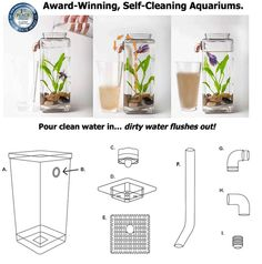 My Fun Aquariums GravityFlow Self-Cleaning tank – The Original Self-Cleaning Fish Tank Self Cleaning Fish Tank, Nature Aquarium, Paludarium, Aquascaping, Glass Garden, Freshwater Fish, Small Gardens, Small World, Cords