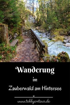 Hast du Lust auf eine Wanderung wie in einem Märchen? Im Zauberwald am Hintersee, nahe Ramsau ist das möglich. Im Berchtesgadener Land gibt es einen tollen Wanderweg für die ganze Familie. Wir nehmen dich mit!