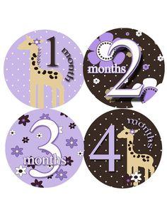 From Etsy - PurplePossum shop -- monthly onesie stickers, must have.