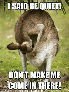 ❥ Haha Kangaroo parenting (so cute)