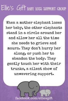 """""""When a mother elephant loses her baby, the other elephants stand in a circle around her and allow her all the time she needs to grieve and mourn. They don't hurry her along, or push her to abandon the body. They gently touch her with their trunks, a silent show of unwavering support."""""""