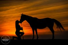 alone with my horse, sunsets