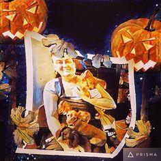 #happyhalloween #halloween #halloween2016 #oslonorway #oslo #funny #dogs #russiantoyterrier #dogsofig #russkiytoyterrier #russkiytoy #cocomalenjkayastranajamaika #irishanochizuru #irishanoborik #happybreeder #kennelirishano #prisma #photolab