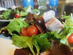 Sous-Vide Tuna Confit on Green Salad - Sous-Vide Life