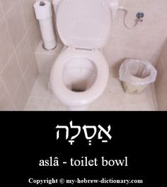 "How to say ""Toilet bowl"" in Hebrew. Click here to hear it pronounced by an Israeli: http://www.my-hebrew-dictionary.com/toilet_bowl.php"