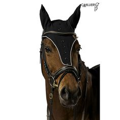 Cavalliera DIAMOND Ear Bonnets Long Version Bonnet Cheval, Hottes
