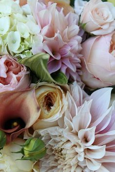 Garden roses, cafe au'lait dahlias, hydrangea, callas...