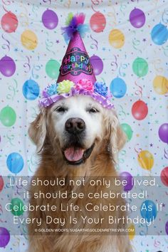 Life should not only be lived, it should be celebrated! Celebrate Life. Celebrate As If Every Day Is Your Birthday!