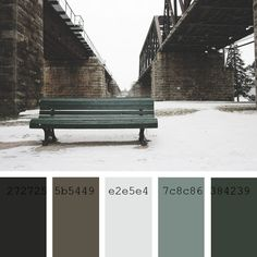 #ColorPalette #blue #green #azul #verde #paleta #color #gris #grayish #bluish #winter #snow