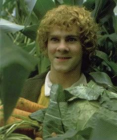 Merry Brandybuck from The Lord of the Rings