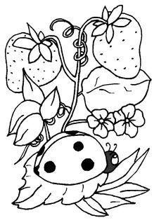 Dieren Kleurplaten voor kinderen. Kleurplaat en afdrukken tekenen nº 217