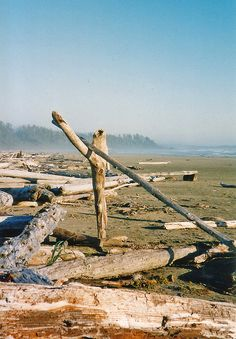 A great place to go - Long Beach, Tofino
