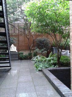 Small backyard garden  Lovely