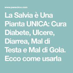 La Salvia è Una Pianta UNICA: Cura Diabete, Ulcere, Diarrea, Mal di Testa e Mal di Gola. Ecco come usarla